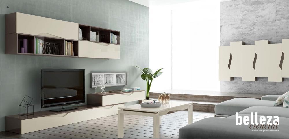 Salones minimalistas en colores relajantes en fontana for Salon comedor minimalista